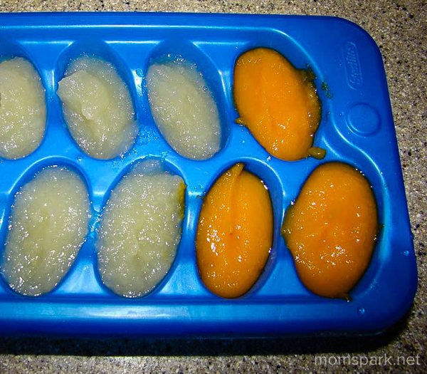 Homemade Baby Food Freeze Ice Tray momspark.net