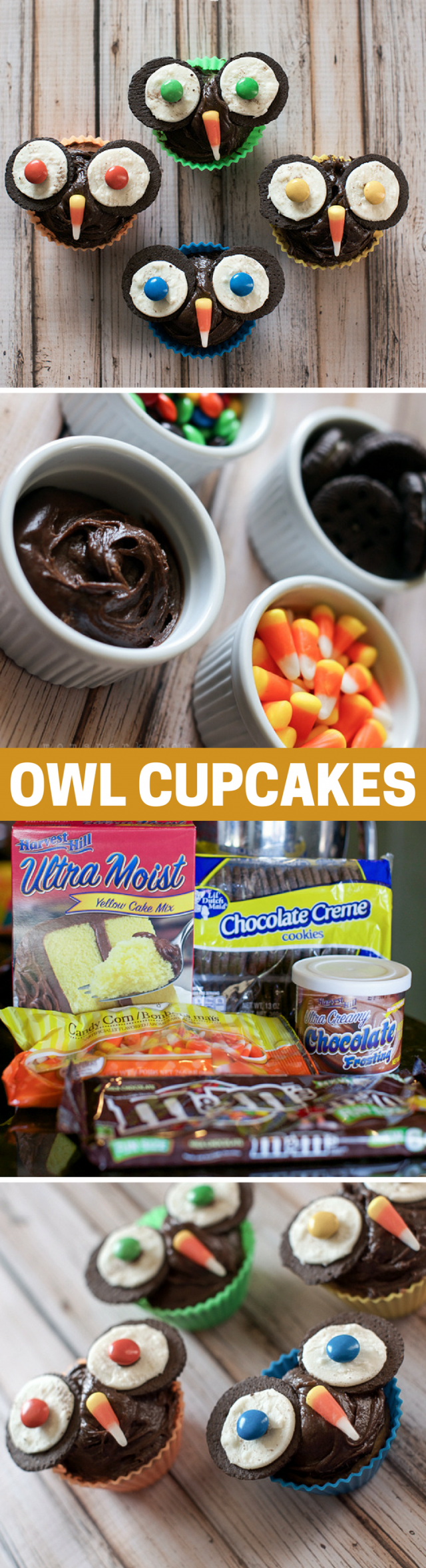 How to a Make Owl Cupcake Recipe for Fall and Halloween!