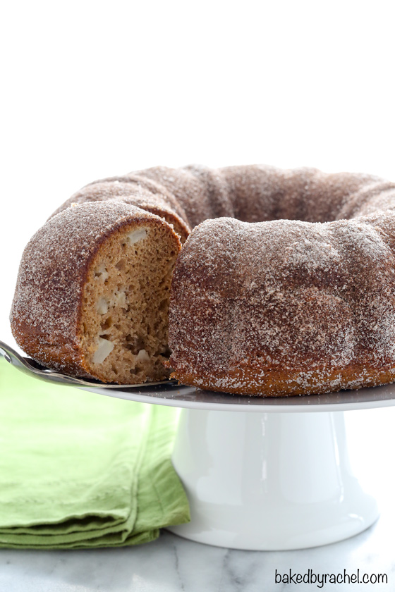 It's officially apple-picking season. Here are 20 awesome apple recipes to make this fall with all of your apples! -  Apple Cider Donut Bundt Cake